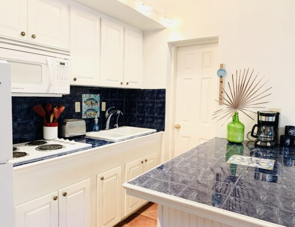 Open kitchen includes a large sink, full size refrigerator, stovetop and microwave